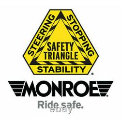 For Ford F-150 F-250 Rear Air Shocks Monroe Max-air Shock Absorber